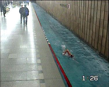 Plavecká dráha - klikni  > další Fotka