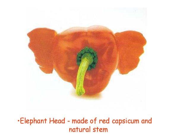 Slon ? - klikni  > další Fotka
