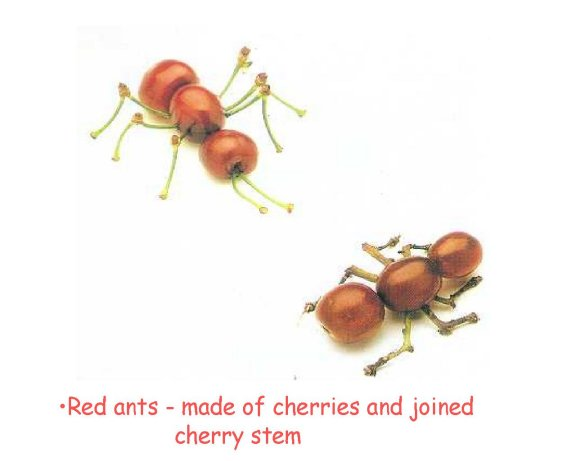 Mravenci? - klikni  > další Fotka